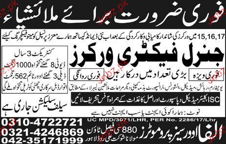 General Factory Workers Job Opportunity