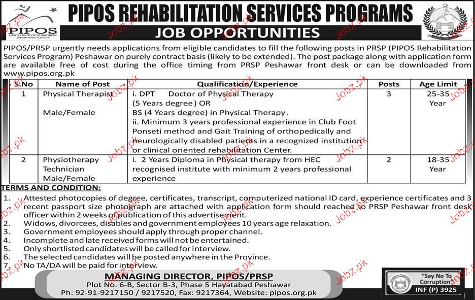 PIPOS Rehabilitation Services Programs Jobs