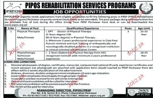 PIPOS Rehabilitation Services Programs Jobs