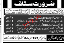 Accountant, Store Incharge, Export Officers Wanted