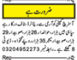 Jobs in Ostrich Company