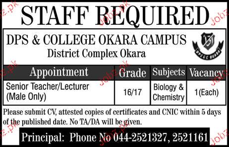 Divisional Public School and College DPS Okara Jobs