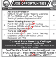 Assistant Professors, Senior Nursing Instructors Wanted
