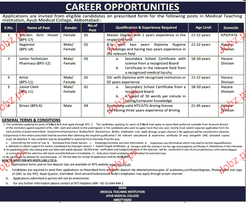 Medical Teaching Institution MTI Abbottabad Job Open