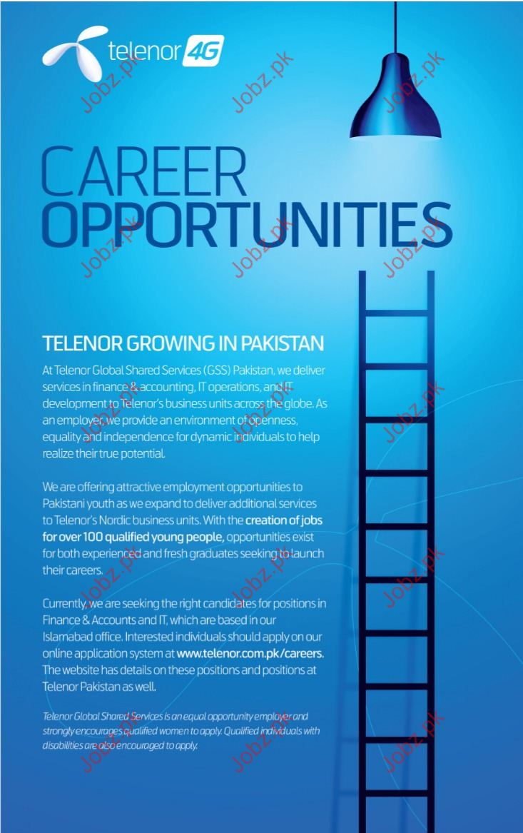 Telenor Company Required Accounts officer