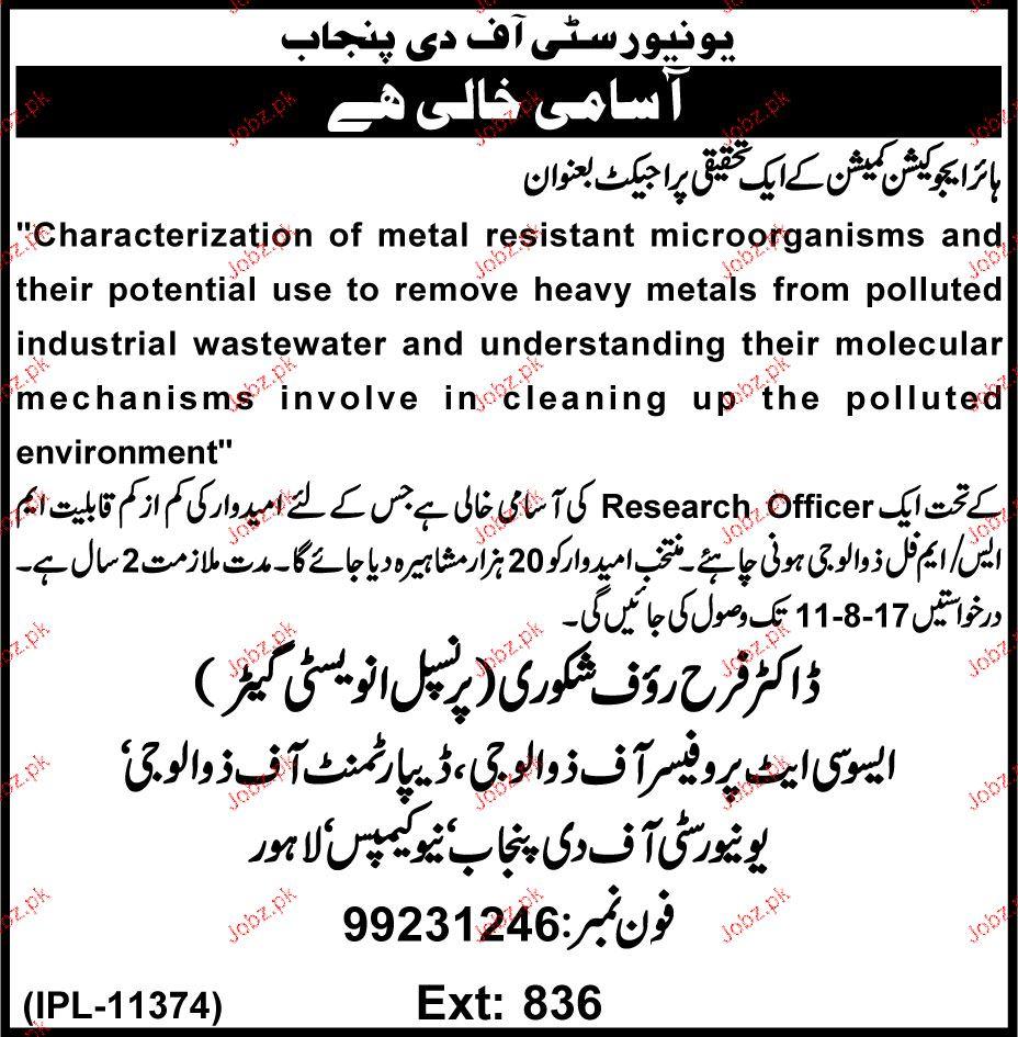 University of the Punjab PU Jobs