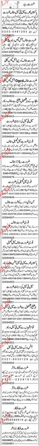 Customer Officers, Phone Operators Job Opportunity