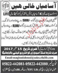 efu Life Insurance Company Required Assistant Unit Manager
