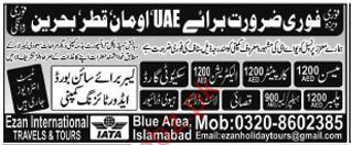 Meson Required For Oman