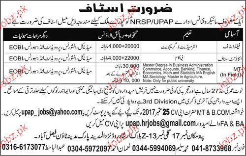 Field Staff, Accountant and MT Staff Job Opportunity