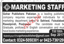 Marketing Staff Job Opportunity