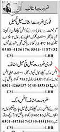 Assistant Required For Private Company