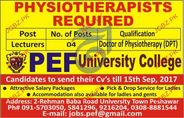 PEF University College Jobs