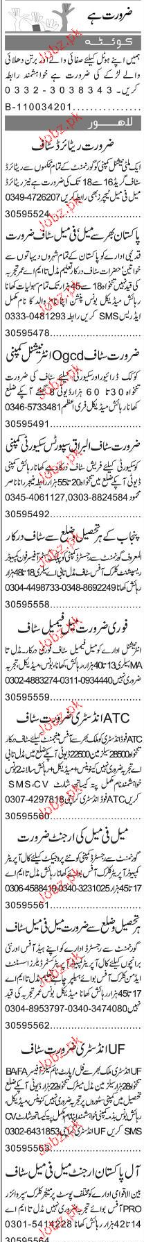 Cleaners, Salesmen, Sales Officers Job Opportunity
