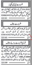 Female Teachers Required For Hilson Public School