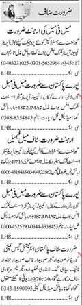 Clerical Staff Required For private Company