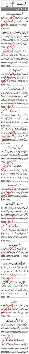 Security Gurds, Data Entry Operators Job Opportunity