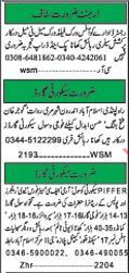 Male & Female Staff Required For Field Work