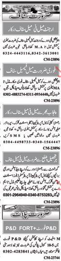 Male & Female Staff Required For Private Company
