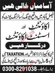 Accountant and Assistant Accountant Job Opportunity