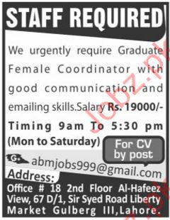 Coordinator Required For Lahore Pakistan