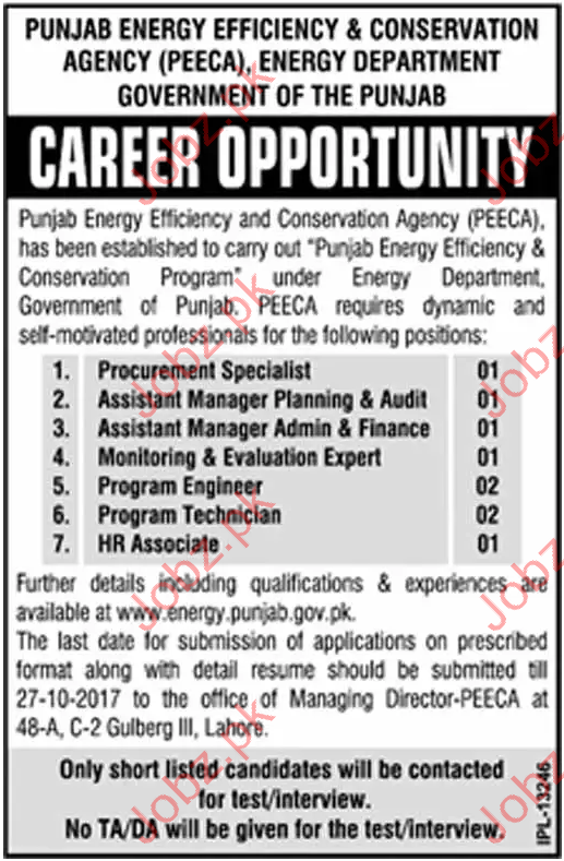 Punjab Energy Efficency & Conservation Agency PEECA Jobs