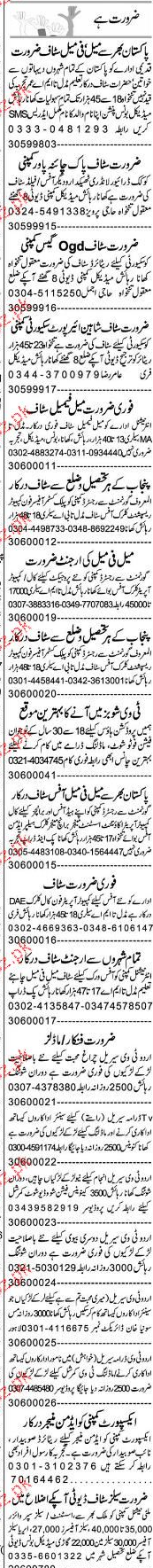 Receptionists, Clerks, Office Boys Job Opportunity