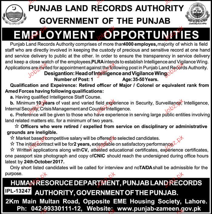 Punjab Land Records Authority Jobs