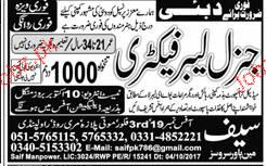 General Labor Factory Job Opportunity