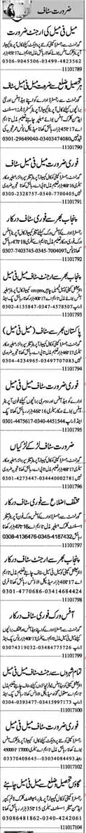 Assistant Manager, Data Entry Operator & Clerical Staff Jobs