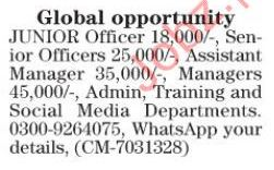 junior officer,assistant manager, manager, jobs 2017