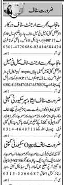 Security Guards & Office Staff Jobs Opportunity
