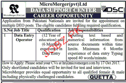 MicroMerger Pvt Ltd Jobs