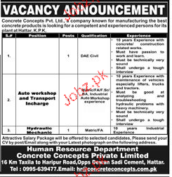 Concrete Concepts Private Limited Jobs