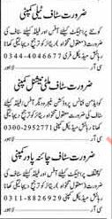 Office Staff Jobs Opportunity 2017 Lahore