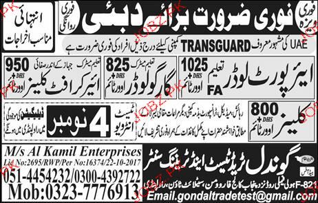 Airport Loaders, Cargo Loaders Job Opportunity