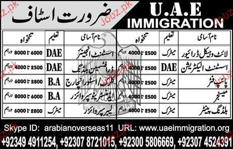 Light Vehicle Drivers, Assistant Electrician Job Opportunity
