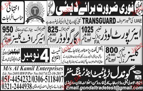 Airport Loaders and  Cargo Loaders  Job Opportunity