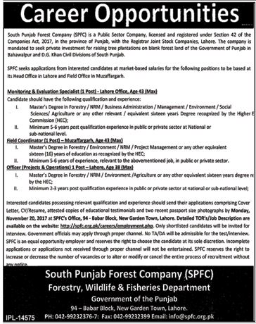 South Punjab Forest Company SPFC Jobs