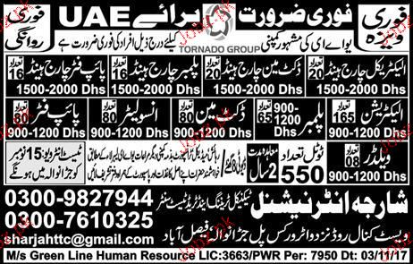 Electrical Charge Hand, Plumber Charge Hand Wanted