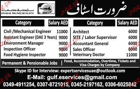 Civil Engineers, Mechanical Engineers Job Opportunity