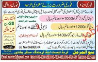 Hospital Cleaners and Malis Job Opportunity