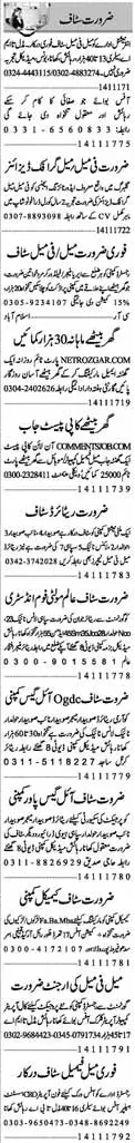 Area Manager, Field Workers & Office Staff Jobs