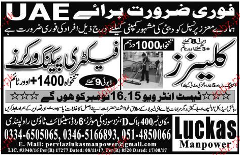 Cleaners and Factory Packing Workers Job Opportunity