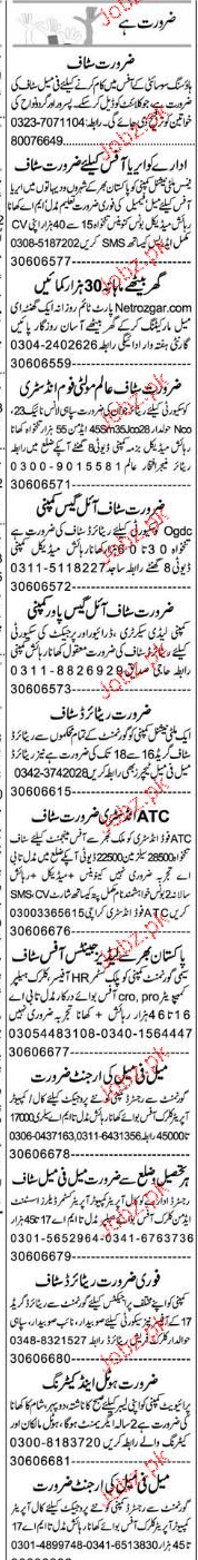 Data Entry Operators and Security Guards Job Opportunity