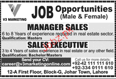 Sales Manager and Sales Executives Wanted