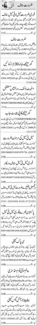 Area Manager & Field Workers Jobs 2017