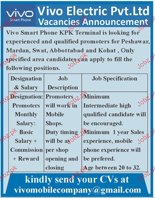 Vivo Electric Private Limited Jobs