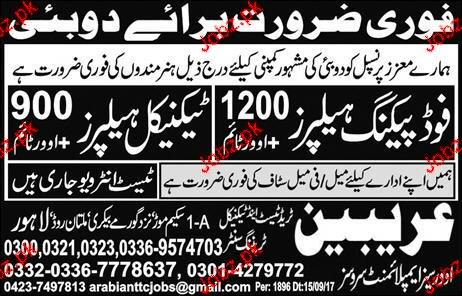 Food Packing Helpers and Technical Helpers Job Opportunity