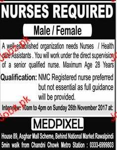 Male / Female Nurses Job Opportunity